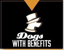 dogsbenefits